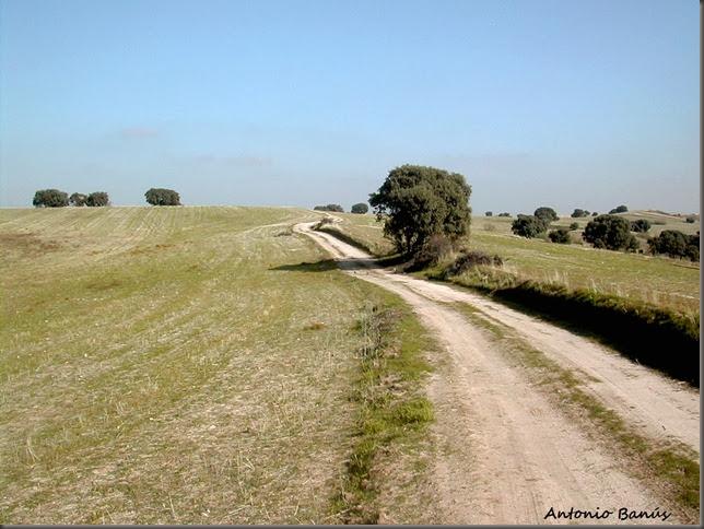 8 Camino DSCN6705X1