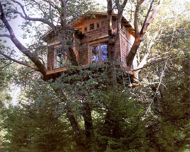 Hacer una casa infantil - Casas de arbol ...
