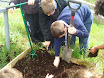 Planting school garden 012.jpg