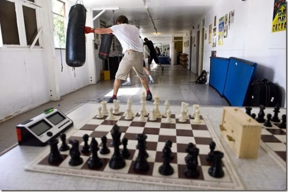 chessboxing-chess-box-4