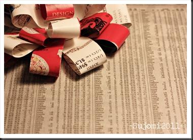 2011 12 13 IMG_7683w