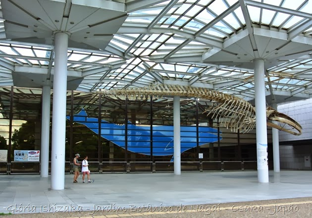 7 b - Glória Ishizaka - Jardim Botânico Nagai - Osaka