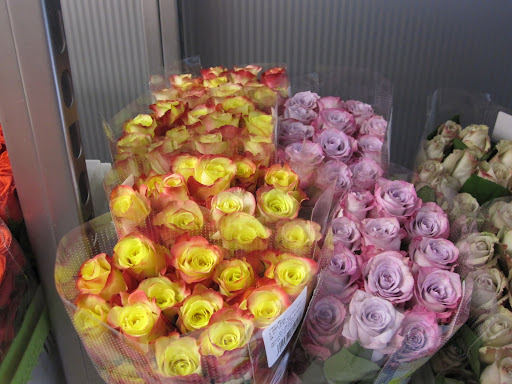 This store really is the place to go if you are in search for the perfect rose.