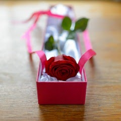 Fresh Flowers Delivered - Luxury Single Red Rose Box