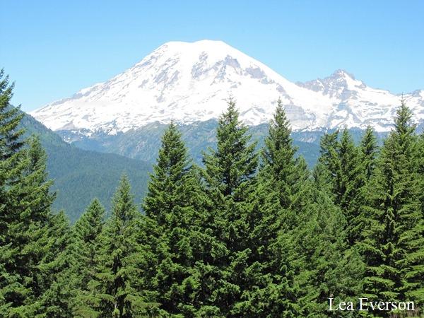 Mt. Rainier 2[1]