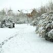 Rooksdown » April 2008 - Snow