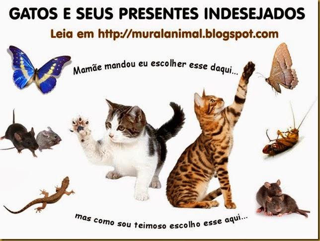 gatos_presentes-indesejados