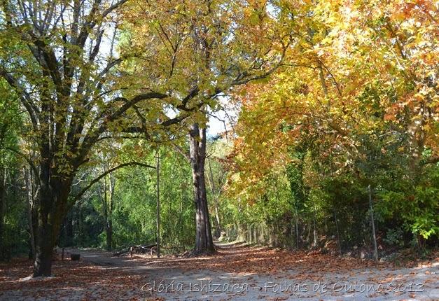 Glória Ishizaka - Outono 2013 - 25