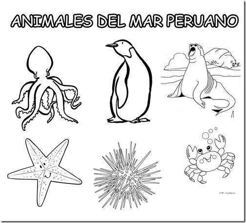 Dibujos del mar peruano para colorear - Imagui