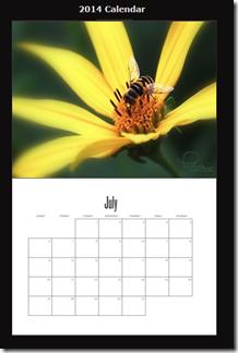 calendar-HoverFly-2