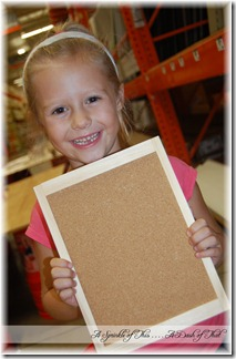 Home Depot Clinic - Bulletin Board 7 {A Sprinkle of This . . . . A Dash of That}