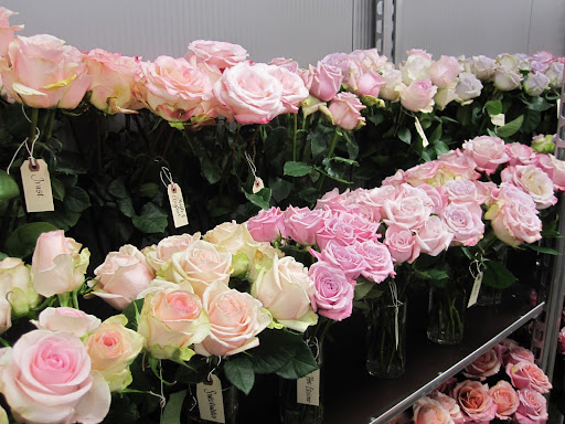 A selection of roses in the store.