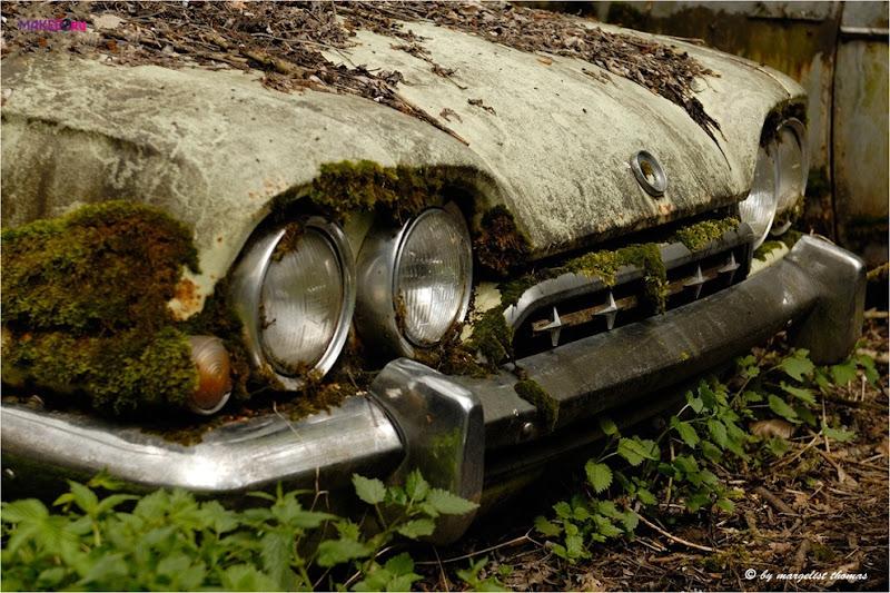 cars_022.jpg