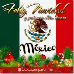 navidad mexico (1)