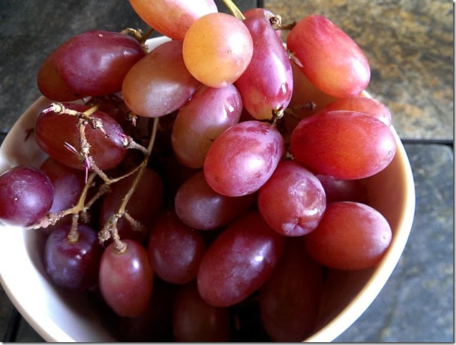 grapes-public-domain-pictures-1 (2252)