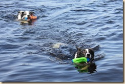 Dogs_Lake_053011-35