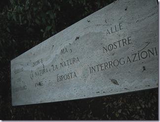 Bosco Ragnaia 108