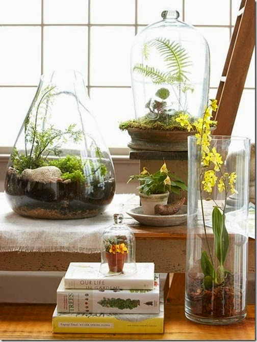terrariums-in-vessels-bhg