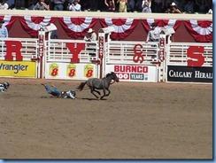 9514a Alberta Calgary - Calgary Stampede 100th Anniversary - Stampede Grandstand - Calgary Stampede Wild Pony Race