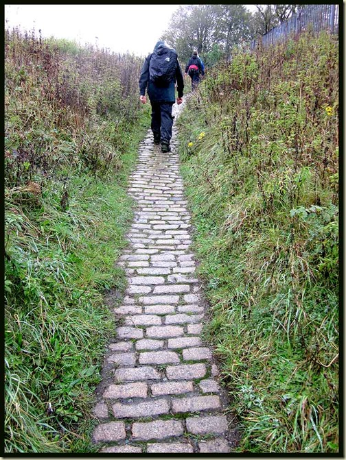 A cobbled path in the Sankey Valley