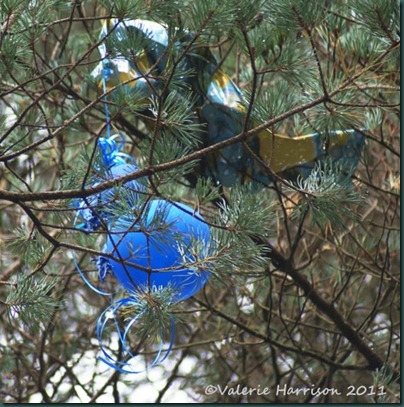 3-balloon-in-tree
