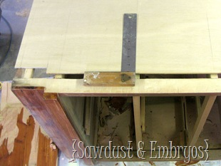 Replacing Sides of Dresser (Sawdust & Embryos)