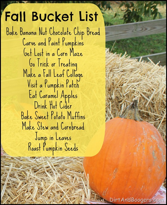 Fall Bucket List, pumpkins,
