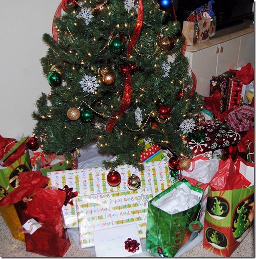 Christmas 2011 079