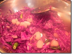purplecabbagepeanutchutney1