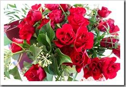 50 Rosen zu meinem Geburtstag_a