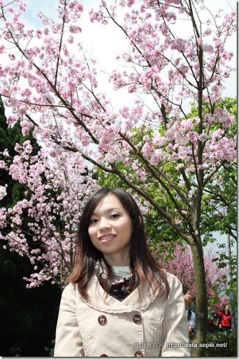 2010陽明山花季-合照