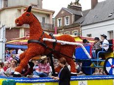 2014.08.15-004 cheval de course