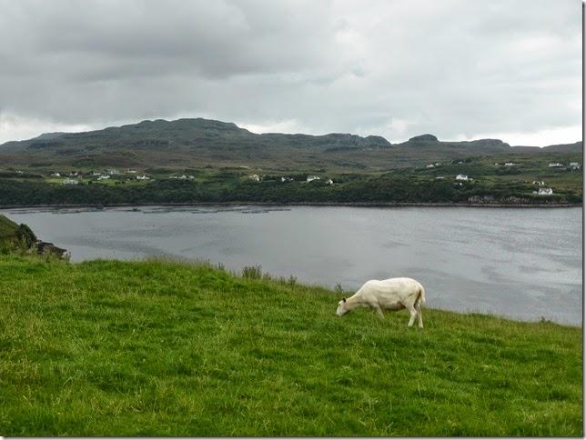 Isle of Skye 044