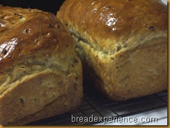 sprouted-barley-bread 034