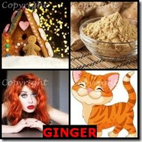 GINGER- 4 Pics 1 Word Answers 3 Letters