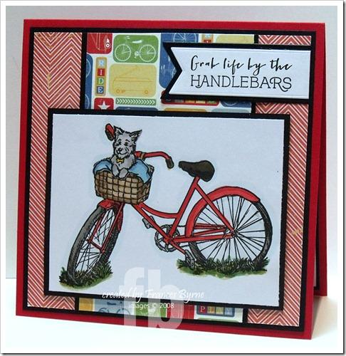 Flourish Bike wm