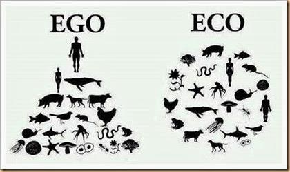 Eco-Vegetariana-VegetariRANGO-Facebook