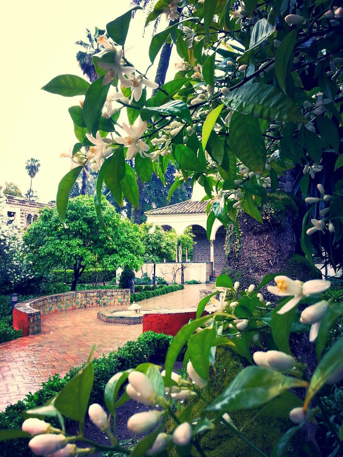 courir ou marcher sous la pluie