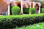 Фото 4 Pharao Hotel Al Mashrabia ex. Al Mashrabiya Sindbad