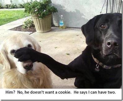 twocookiesplease