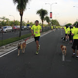 Pet Express Doggie Run 2012 Philippines. Jpg (60).JPG