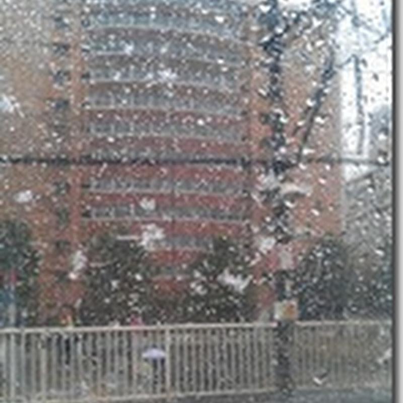 primera nevada 始雪