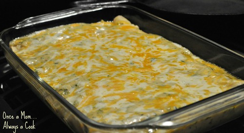 Chicken Enchiladas with a Cream of Jalapeno Sauce Right Out of the Oven