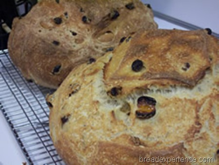 golden-raisin-bread 033