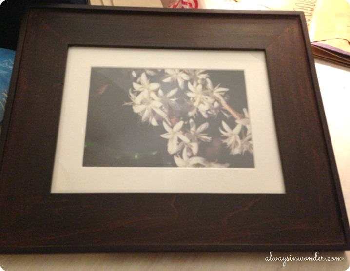 picture frame for diy framed wood sign