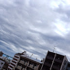 帰国後福岡で定点観測