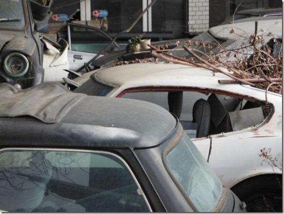 japan-graveyard-old-cars-7
