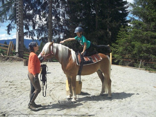 Pferde, Kunst, Zirkus und Theater 2013 2