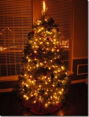 24.  Lowry Christmas Tree 2011