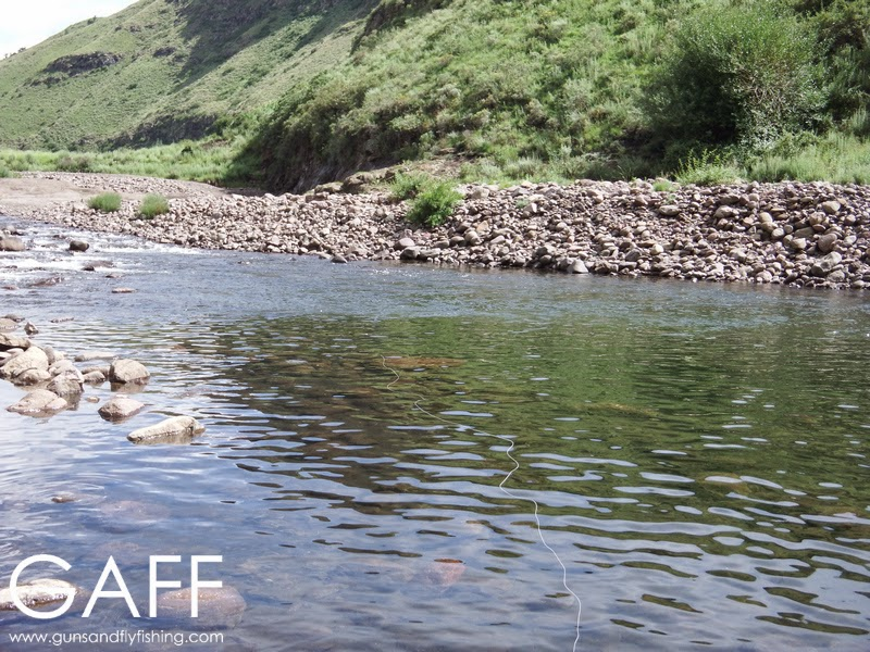 lesotho-yellowfish-flyfishing-trout (1).jpg
